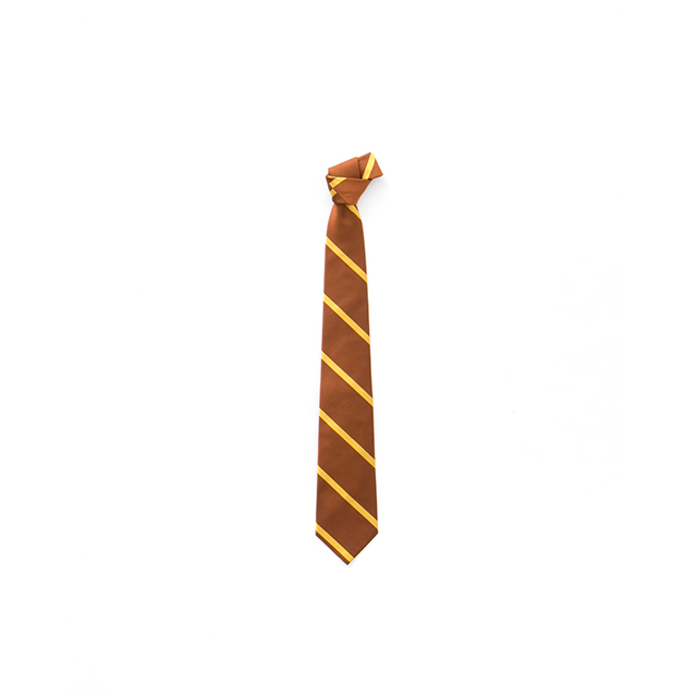 REP SINGLE STRIPE TIE